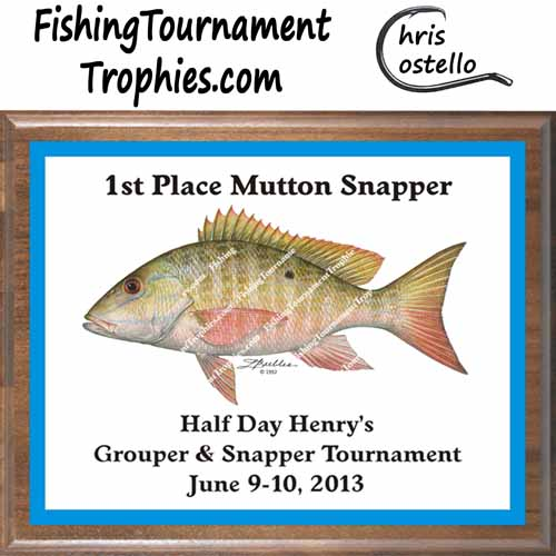 Snapper Trophies, DP